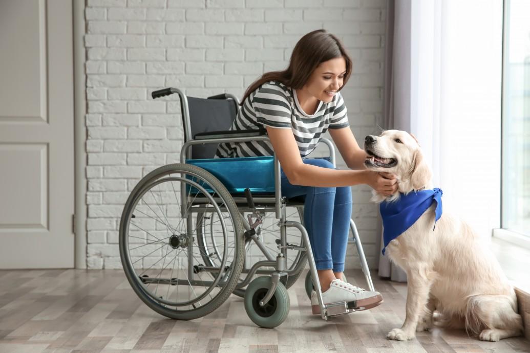 Drzwi wewnętrzne dla osób niepełnosprawnych